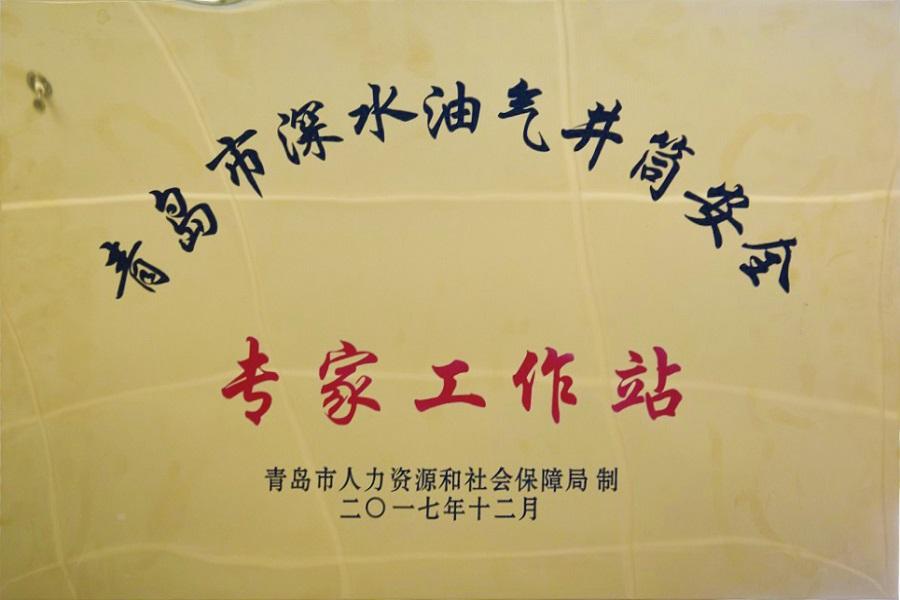 青岛市深水油气井筒安全专家工作站